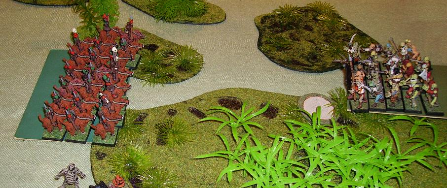 Swamp22